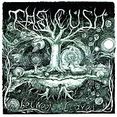 Between the Leaves de The Cush
