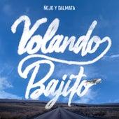 Volando Bajito de Ñejo & Dalmata