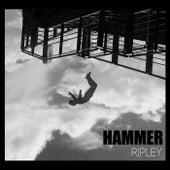 Ripley von Hammer
