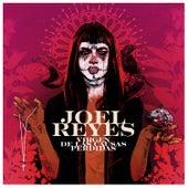Virgen de las Causas Perdidas de Joel Reyes