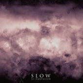 VI - Dantalion by Slow