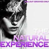 The Natural Experience (Chillout Grooves Only) de Various Artists