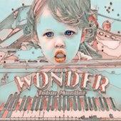 Wonder by Tobin Mueller