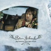 Jag kommer hem igen till jul de Peter Jöback