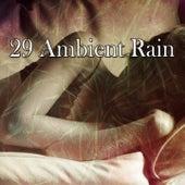 29 Ambient Rain by Rain Sounds Nature Collection