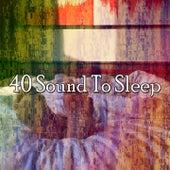 40 Sound to Sleep de Sleepicious