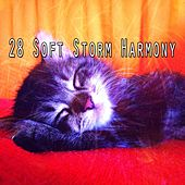 28 Soft Storm Harmony by Rain Sounds (2)