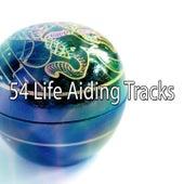 54 Life Aiding Tracks de Meditación Música Ambiente