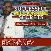 Successful Millionaire Secrets by Video Dave