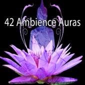 42 Ambience Auras von Massage Therapy Music
