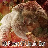 60 Rivers of Liquid Zen von Best Relaxing SPA Music