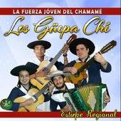 La Fuerza Jóven del Chamamé: Estirpe Regional de Los Güepa-Ché