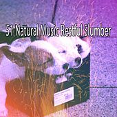 51 Natural Music Restful Slumber by S.P.A