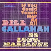If You Could Touch Her at All de Bill Callahan
