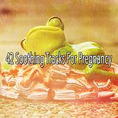 42 Soothing Tracks for Pregnancy de Baby Lullaby (1)