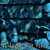 42 Sounds for Peace von Yoga