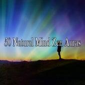 50 Natural Mind Zen Auras de Exam Study Classical Music Orchestra