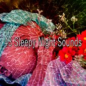 43 Sleepy Night Sounds by Calming Sounds