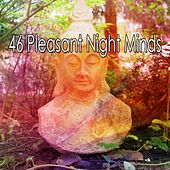 46 Pleasant Night Minds by Zen Music Garden