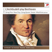 L'Archibudelli Play Beethoven by L'Archibudelli