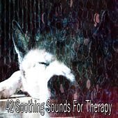 42 Soothing Sounds for Therapy by Deep Sleep Relaxation