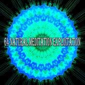 64 Natural Meditation Exploitation de Meditación Música Ambiente