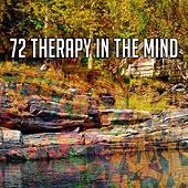 72 Therapy in the Mind de Study Concentration