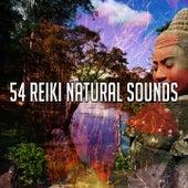 54 Reiki Natural Sounds von Massage Therapy Music