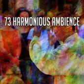 73 Harmonious Ambience de Zen Meditate