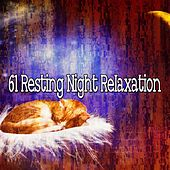 61 Resting Night Relaxation by Spa Relaxation
