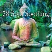 78 Soul Soothing de Meditación Música Ambiente