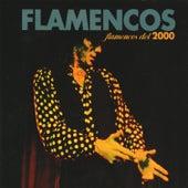Flamencos del 2000 de Varios Artistas