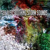 28 Just Soothing Storm Sounds by Rain Sounds and White Noise