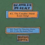 Original Schvitz 001 by Nathan Micay