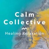 Healing Relaxation de The Calm Collective