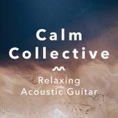 Relaxing Acoustic Guitar de The Calm Collective