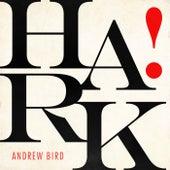 Hark! de Andrew Bird