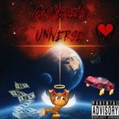 Calibre's Universe by CNG Calibre