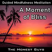 Guided Mindfulness Meditation: A Moment of Bliss van The Honest Guys