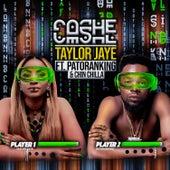 Cashe de Taylor Jaye