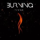Burning von Finnx