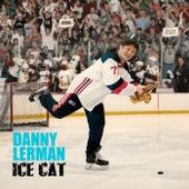 Ice Cat de Danny Lerman