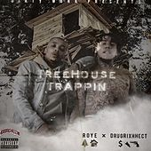 Treehouse Trapping von Roy E.