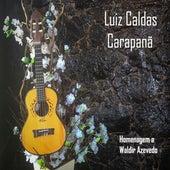 Carapanã: Homenagem a Waldir Azevedo de Luiz Caldas