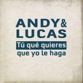 Tu Qué Quieres Que Yo Le Haga de Andy & Lucas