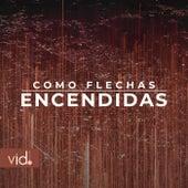 Como Flechas Encendidas by Rodrigo García