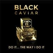 Do It... The Way I Do It by Black Caviar