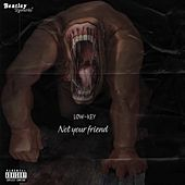 Not Your Friend by Low Key