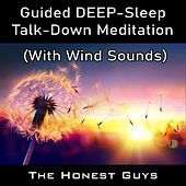 Guided Deep-Sleep Talk-Down Meditation (With Wind Sounds) van The Honest Guys