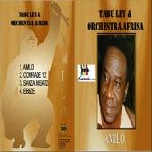 Amilo by Tabu Ley Rochereau